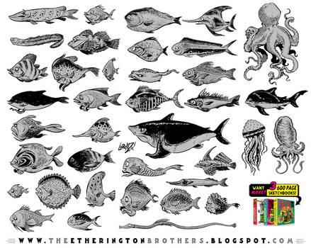 FISH CHARACTERS REFERENCE SHEET!