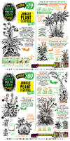 How to THINK when you draw JUNGLE CLUSTERS tute!