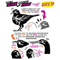 How to THINK when you draw BIRD HEADS QUICK TIP!