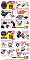 How to THINK when you draw BIRD HEADS tutorial!