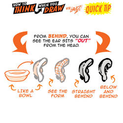 How to THINK when you draw EARS FROM BEHIND TIP!