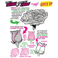 How to THINK when you draw ROSES QUICK TIP!