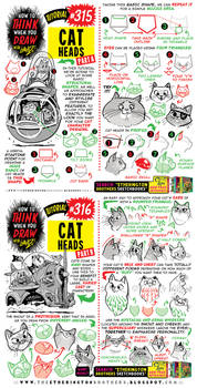 How to THINK when you draw CAT HEADS tutorial!