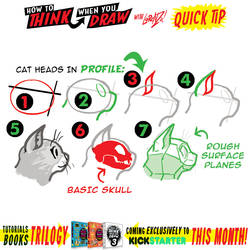 How to THINK when you draw CATS QUICK TIP!