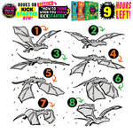 DRAGON WINGS! 9 HOURS until the KICKSTARTER CLOSES