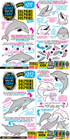 How to THINK when you draw DOLPHINS tutorial!