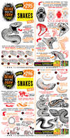 How to THINK when you draw SNAKES tutorial!