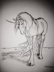 Average Unicorn Sketch