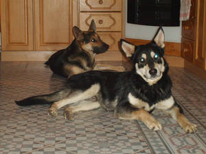 Lora and Spike