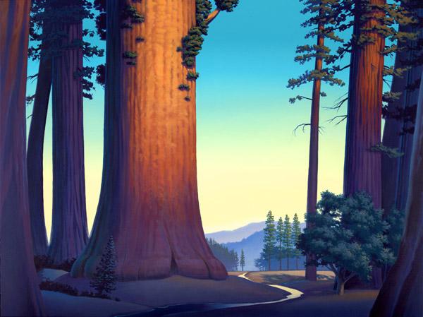 sequoia dawn by David-McCamant