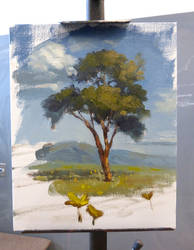 Quick demo for students, landscape class