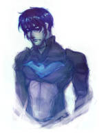 Nightwing-chan by Casadriss