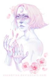Single Pale Rose