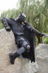 Batman On The Rocks