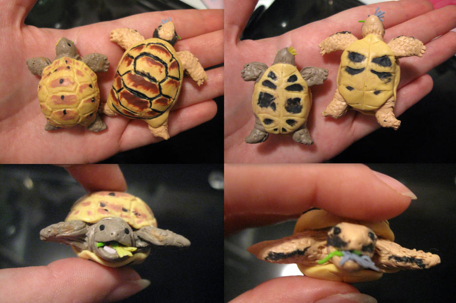 Tartarughine Two_little_turtles_by_romanticocrepuscolo-d5pcfft