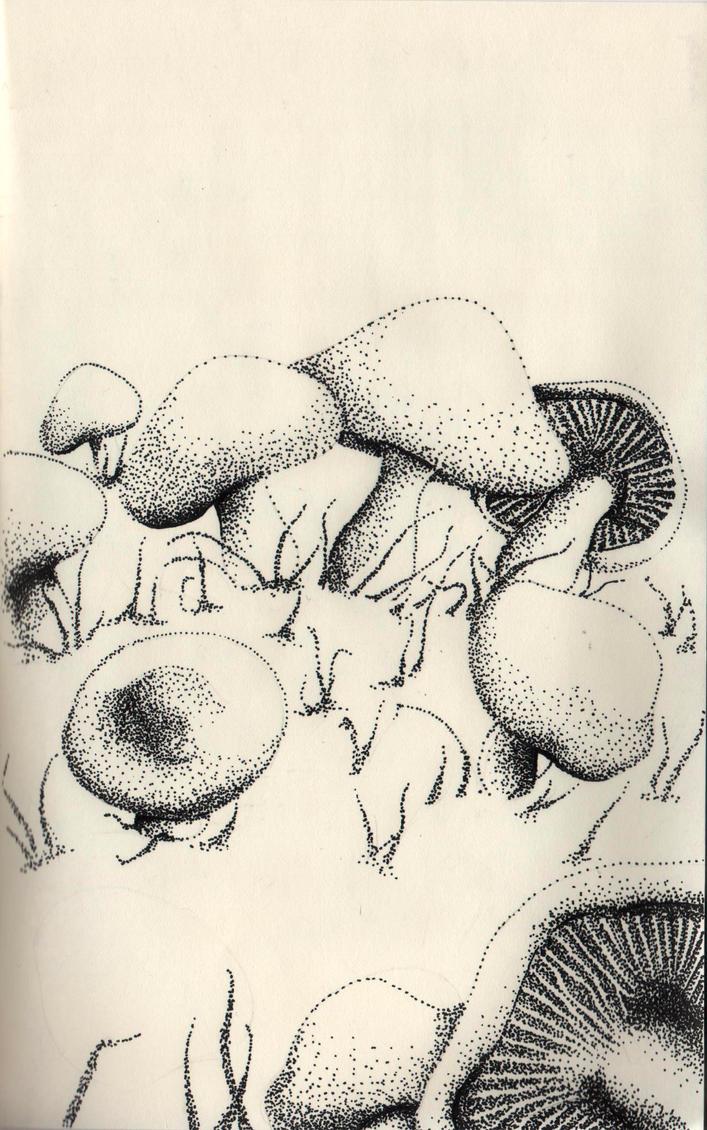 autumn serie mushroom by Aphrena