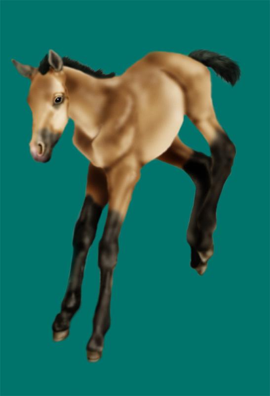 Jazzy foaling Buckskin_Baby_by_blue_snowangel