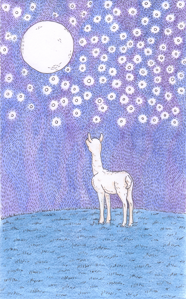 Good Night Llama by tinylaughs