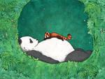 My Neighbour Panda