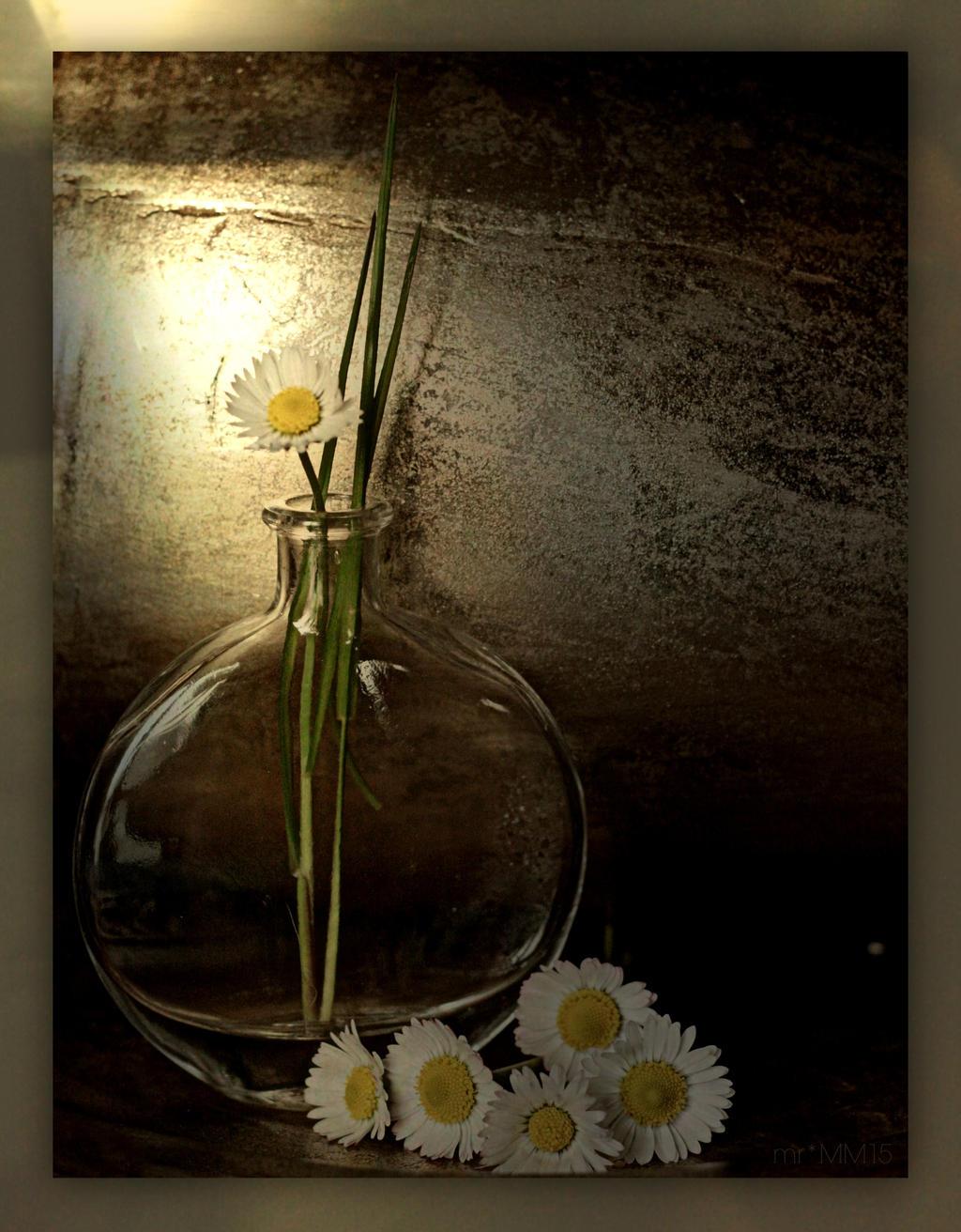 To Selina by martaraff