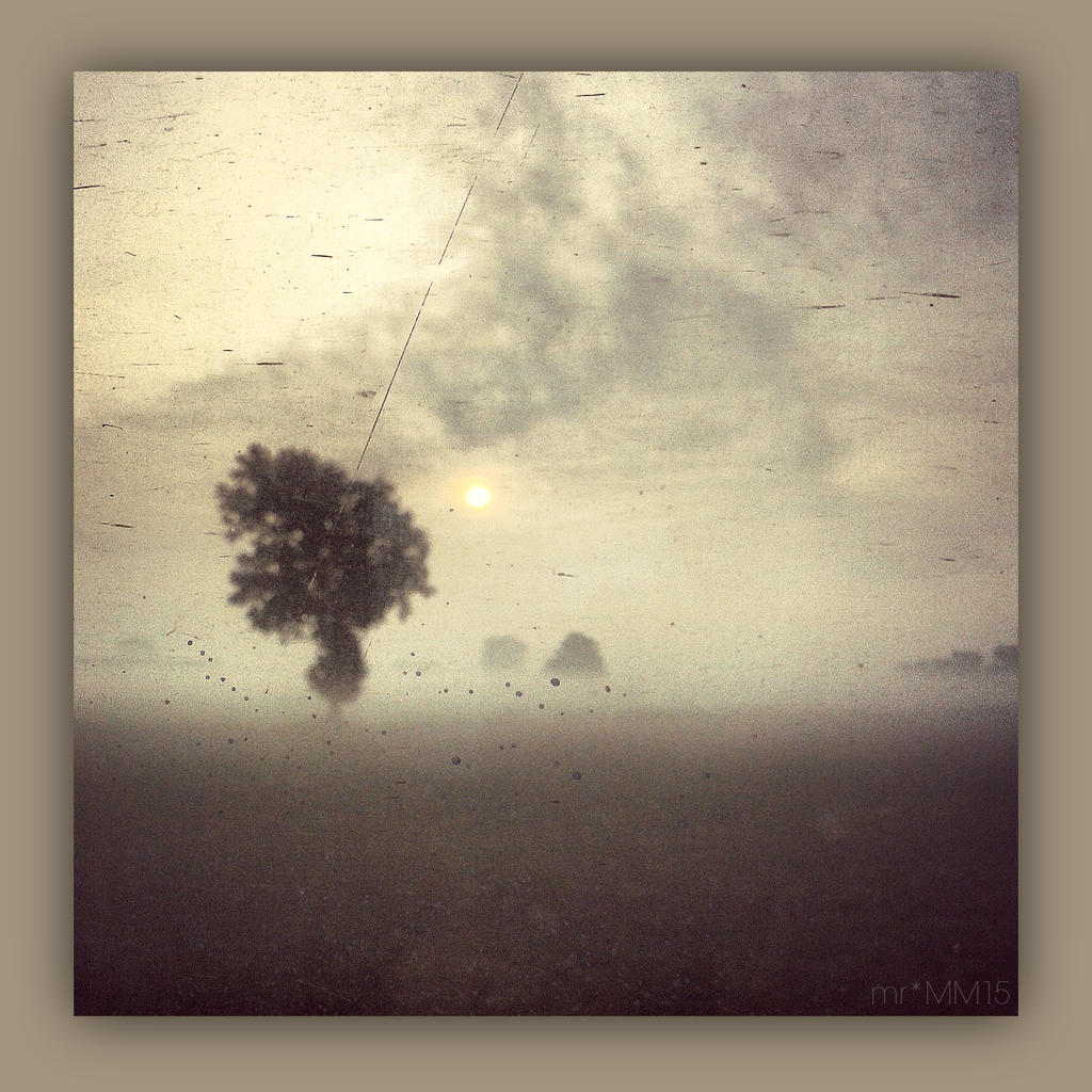 Im Nebel by martaraff