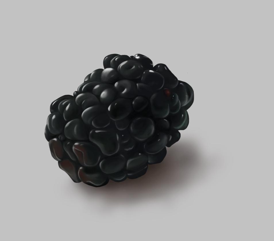 Black Berry Practice by TracerBullit