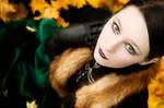 Herbst by Nightshadow-PhotoArt