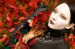 Herbst III by Nightshadow-PhotoArt