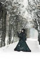 Wintermaerchen by Nightshadow-PhotoArt