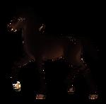 N3798 Padro Foal Design