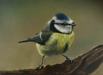 bird oil painting by Ebbenhorst