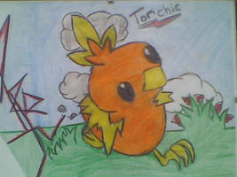 ---Torchic--- by pokemonmaster1992