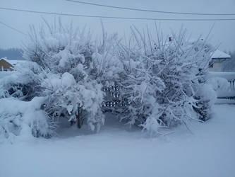 Polish winter in Potakowka on Podkarpacie by MerenwenCulnamo