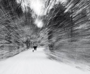 Winter #1 by SorenWrang