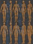 Full-Body Anatomy study by MaRaMa-Artz