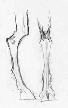 Satyri Leg Rethink