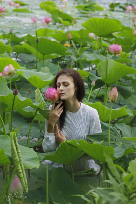 Lotus elf 3