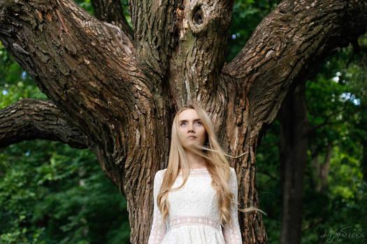 Alice in wood