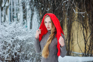 Winter Fairytale 4