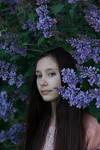 Lilac pixie 4