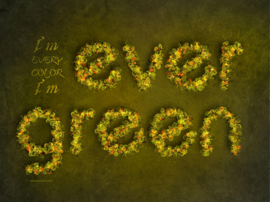 Evergreen by Textuts