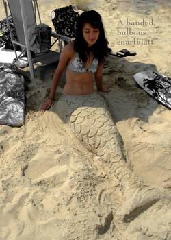 A Little Mermaid