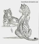 Sumatran Stripes