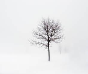 Minimum visibility by mstargazer