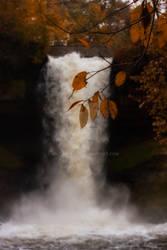 I am a waterfall