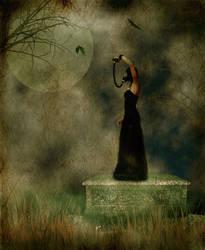 Black Parade by Jennelizabeth
