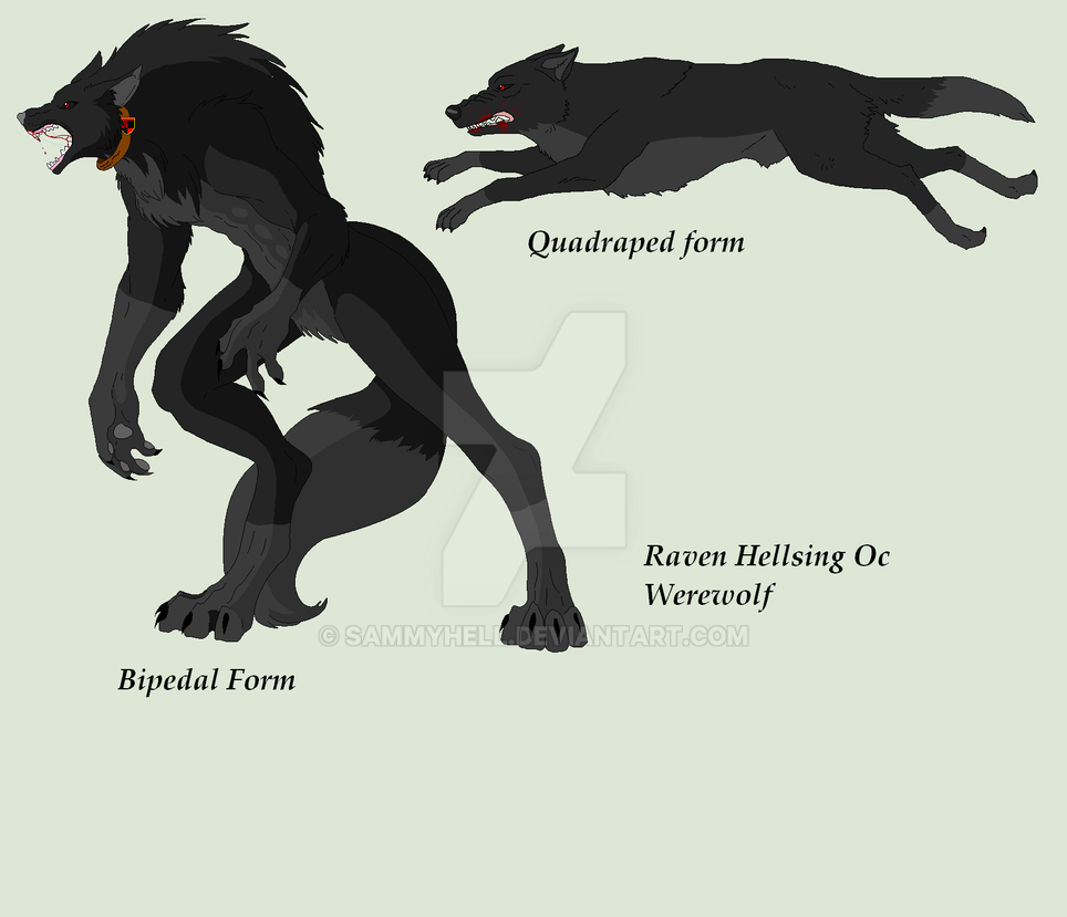 Both wolf forms of raven by SammyHell