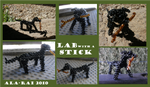That Lab with a Stick