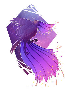 Cosmo-bird
