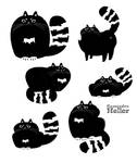 Grumpy cat designs